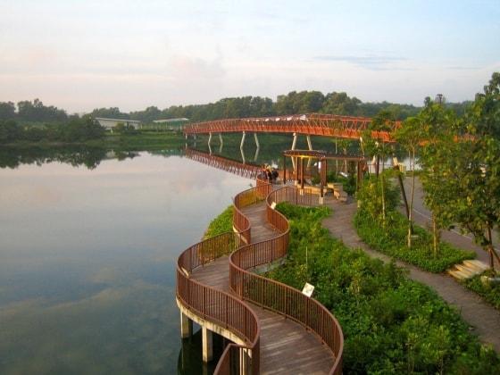 Michane in Singapore back image