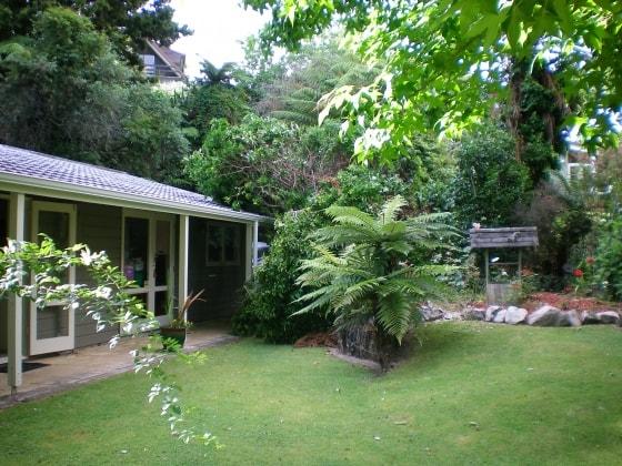 Elaine in Rotorua back image