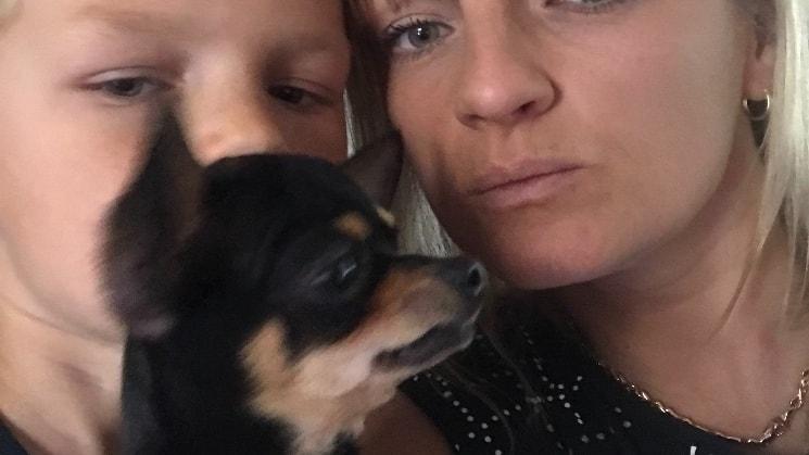 Mindy - Dog Boarding, Doggy Day Care | Pawshake