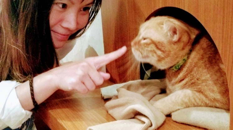 Pei Wen in Best back image
