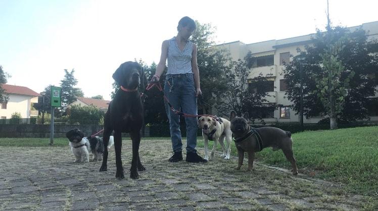 Francesca a Origgio back image