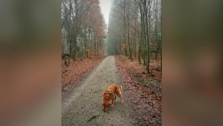 Julia in Crailsheim back image