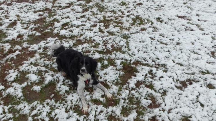 Ashley in Exeter back image