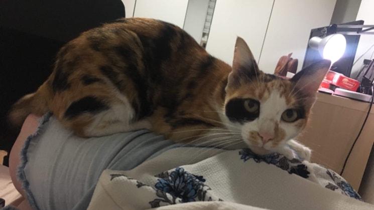 Vania in Perth back image
