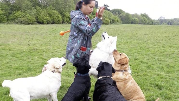 Meena in Hounslow back image